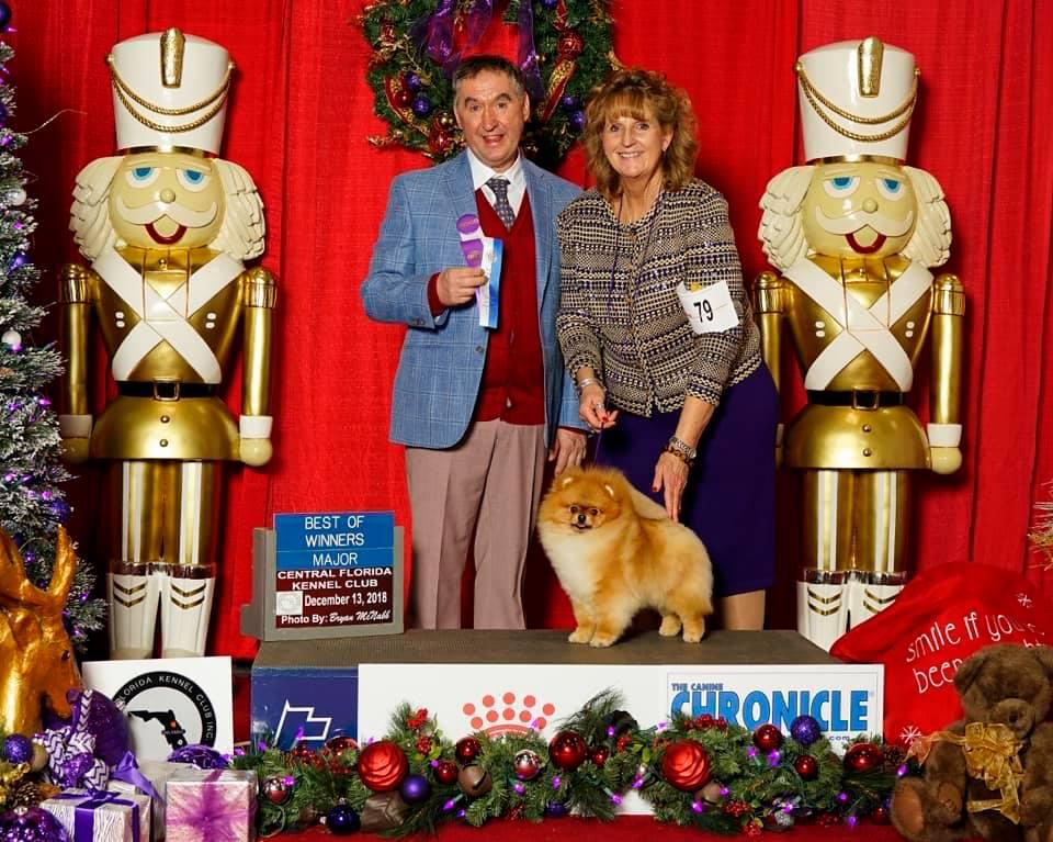 Orlando National Championship Dogshow