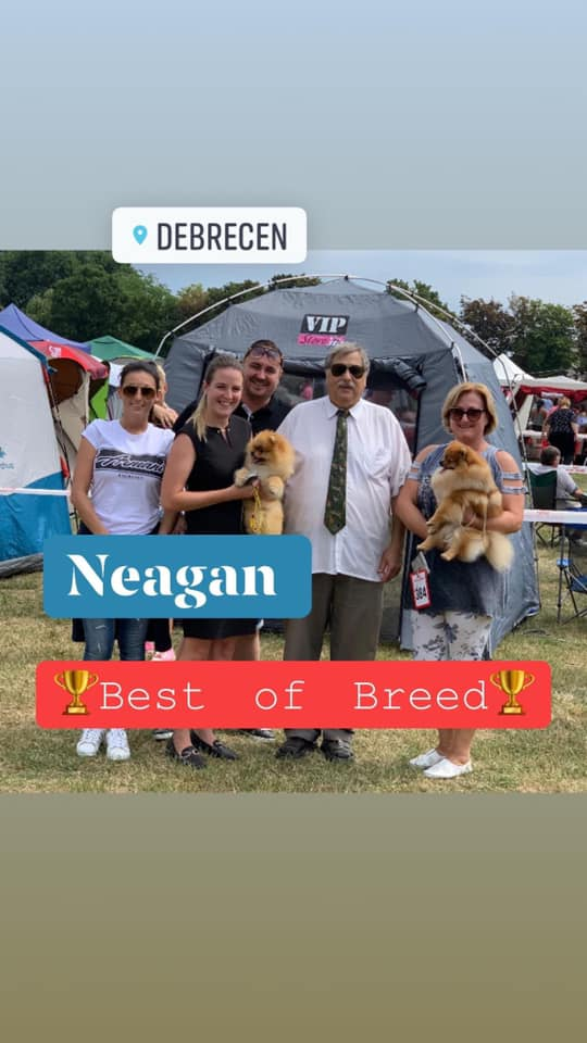 🎉🎉R.BEST IN SHOW 🎉🎉goes to Neagan!!