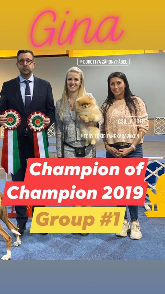 BUDAPEST – Champion of Champions..